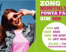 Zong Monthly Power Pack SIM 500