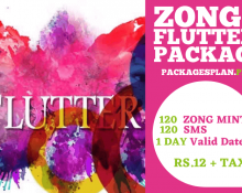 Zong Flutter Package