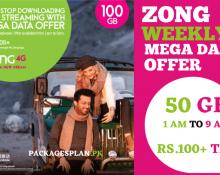 Zong Mega Data Offer