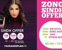 Zong Sindh Offer