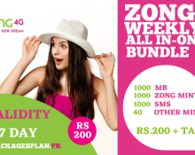 Zong Weekly All In-One-Bundle