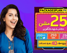 Telenor 3 Day Sahulat Offer