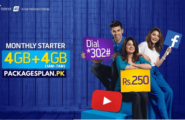 Telenor 4G Monthly Starter Bundle