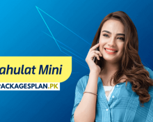 Telenor Sahulat Mini Offer